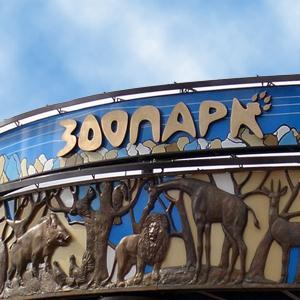 Зоопарки Анивы